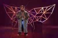 The Masked Singer II